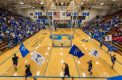Owls Basketball Defeated by Greensburg Pirates