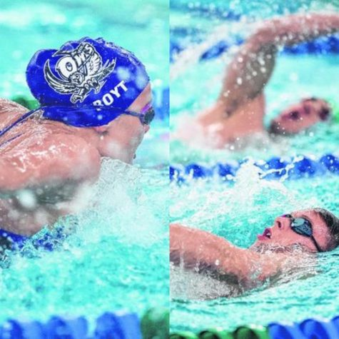 Make A Splash With Seymour Swimming & Diving