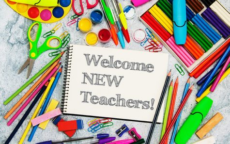 New Teacher Interviews Week 2